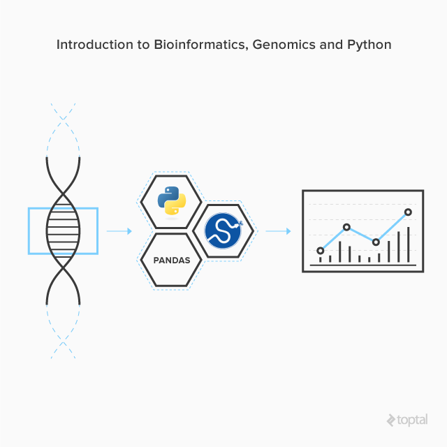 The Comprehensive Introduction To Your Genome With SciPy